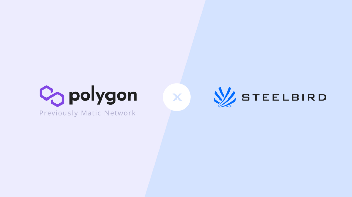 SteelBird Collaboration with Polygon