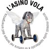 Go to the profile of L'asino vola