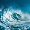 Go to the profile of Keep the Ocean Working