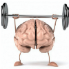 Go to the profile of Mental Physique