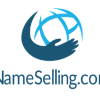 Go to the profile of NameSelling.com