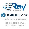 Go to the profile of Raybiztech