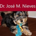 Go to the profile of José M. Nieves