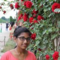 Go to the profile of Rupika Rajendran