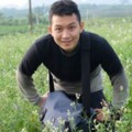 Go to the profile of Truong Nguyen Van Tan