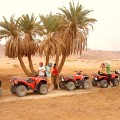 Go to the profile of Dubai Adventures
