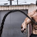 Go to the profile of Bicepsworkout