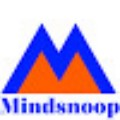 Go to the profile of Mindsnoop Marketing