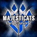 Go to the profile of majecats cheer
