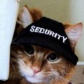 Go to the profile of SecurityKitty