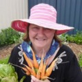 Go to the profile of Carolyn Gemmell