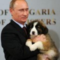 Go to the profile of Buffy Putin