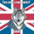 Go to the profile of Wolf Ulmanen