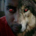 Go to the profile of Zod Magus The Wolf