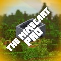 Go to the profile of The minecart Pro☺️