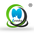Go to the profile of MLeads