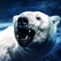 Go to the profile of RoarBear