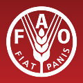 Go to the profile of FAO in Emergencies