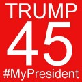 Go to the profile of TRUMP45 #MyPresident