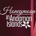 Go to the profile of Andaman islands Travel