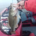 Go to the profile of Hammer Smallmouth