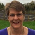 Go to the profile of Alison Harding