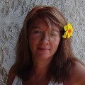 Go to the profile of Susan DeLaurier