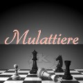 Go to the profile of Mulattiere
