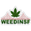 Go to the profile of Weedinsf.com