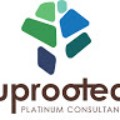 Go to the profile of Uprooted Platinum