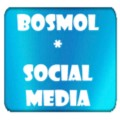 Go to the profile of Bosmol