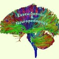 Go to the profile of Execu-Sensory & Neuropedagogy Educational Consulting Services