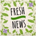 Go to the profile of Fresh News