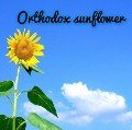 Go to the profile of Orthodox Sunflower