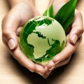 Go to the profile of GreenWorldGroup