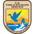 Go to the profile of USFWS Migratory Birds