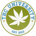 Go to the profile of THC University