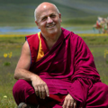 Go to the profile of Matthieu Ricard