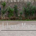 Go to the profile of Liliana Macedo