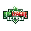 Go to the profile of Big League Lawns