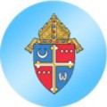 Go to the profile of DC Archdiocese