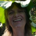 Go to the profile of Diane Lewis