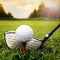Go to the profile of Amateur Golf Union
