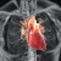 Go to the profile of Piedmont Heart Surgeons