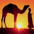 Go to the profile of MoroccoTravel Agency