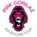 Go to the profile of Pinkgorilaz Bali Tour Packages