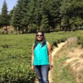 Go to the profile of Aneesha Pillai