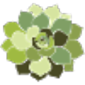 Go to the profile of Harddy Succulents