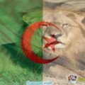 Go to the profile of Leopards Alger