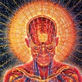 Go to the profile of Expherience